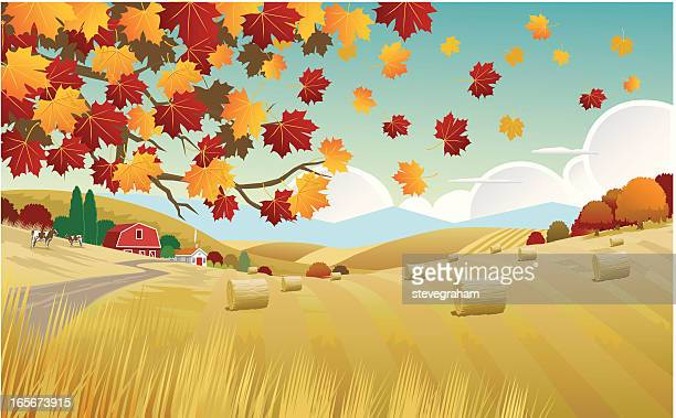 illustration of the autumn countryside - field stock illustrations, clip art, cartoons, & icons