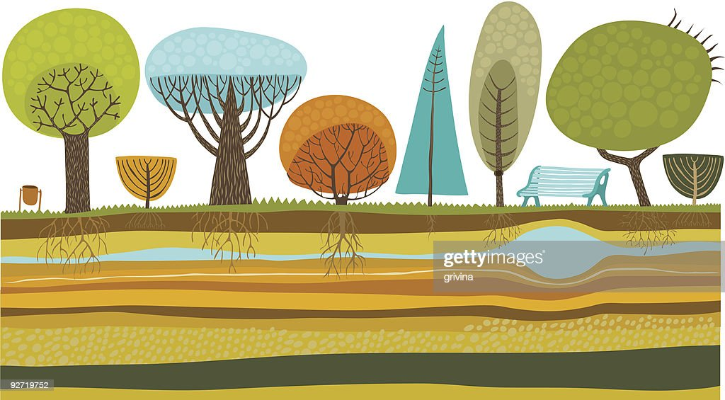Illustration of trees in the park