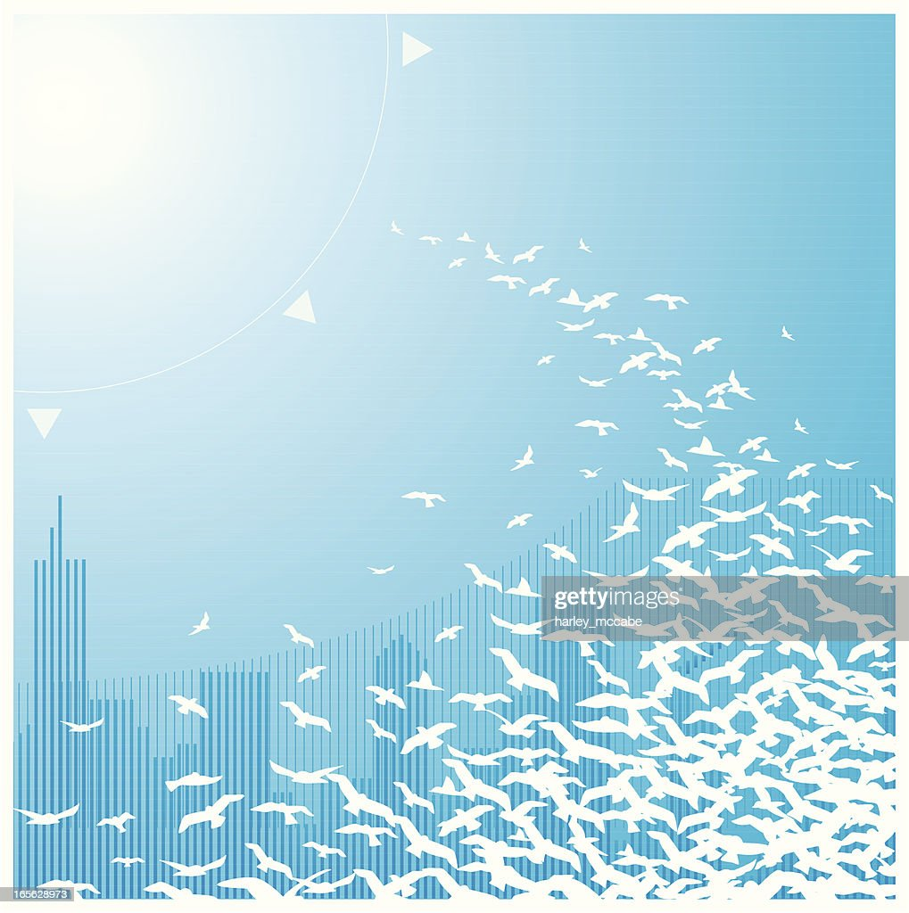 Illustration of white birds flying on a blue background