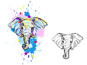 illustration with color and monochrome elephant