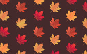 Illustrations of Autumn red maple leaves pattern collection for wallpaper background, cover, card on dark bown background