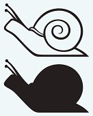 Illustrations of snail cartoons in outline and silhouette