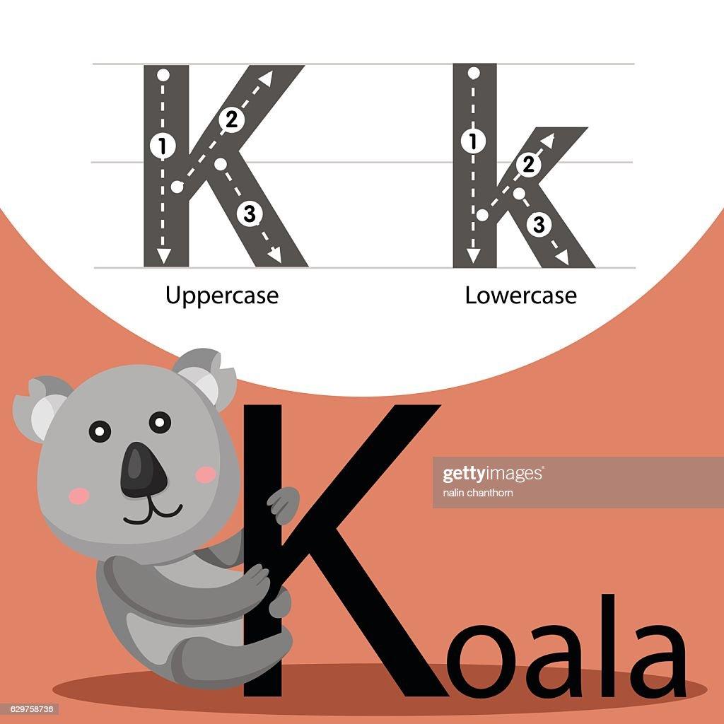 Illustrator of koala with k font