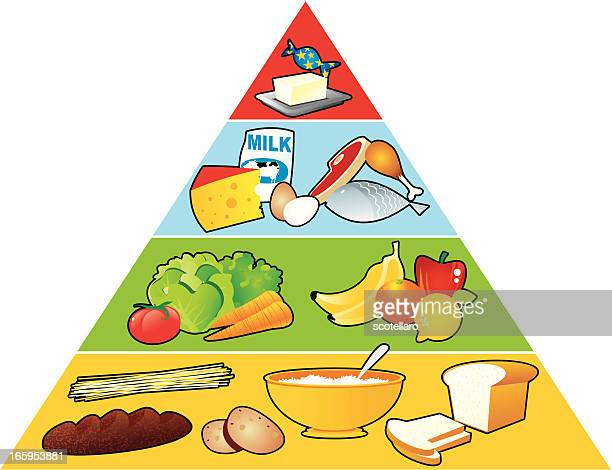 image of food pyramid consists of necessary nutrition - food pyramid stock illustrations