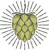 image of hops