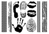 Imprint set evidence. Handprint, footprint, fingerprint, print of the lips, tire tracks. Isolated silhouette vector on white background
