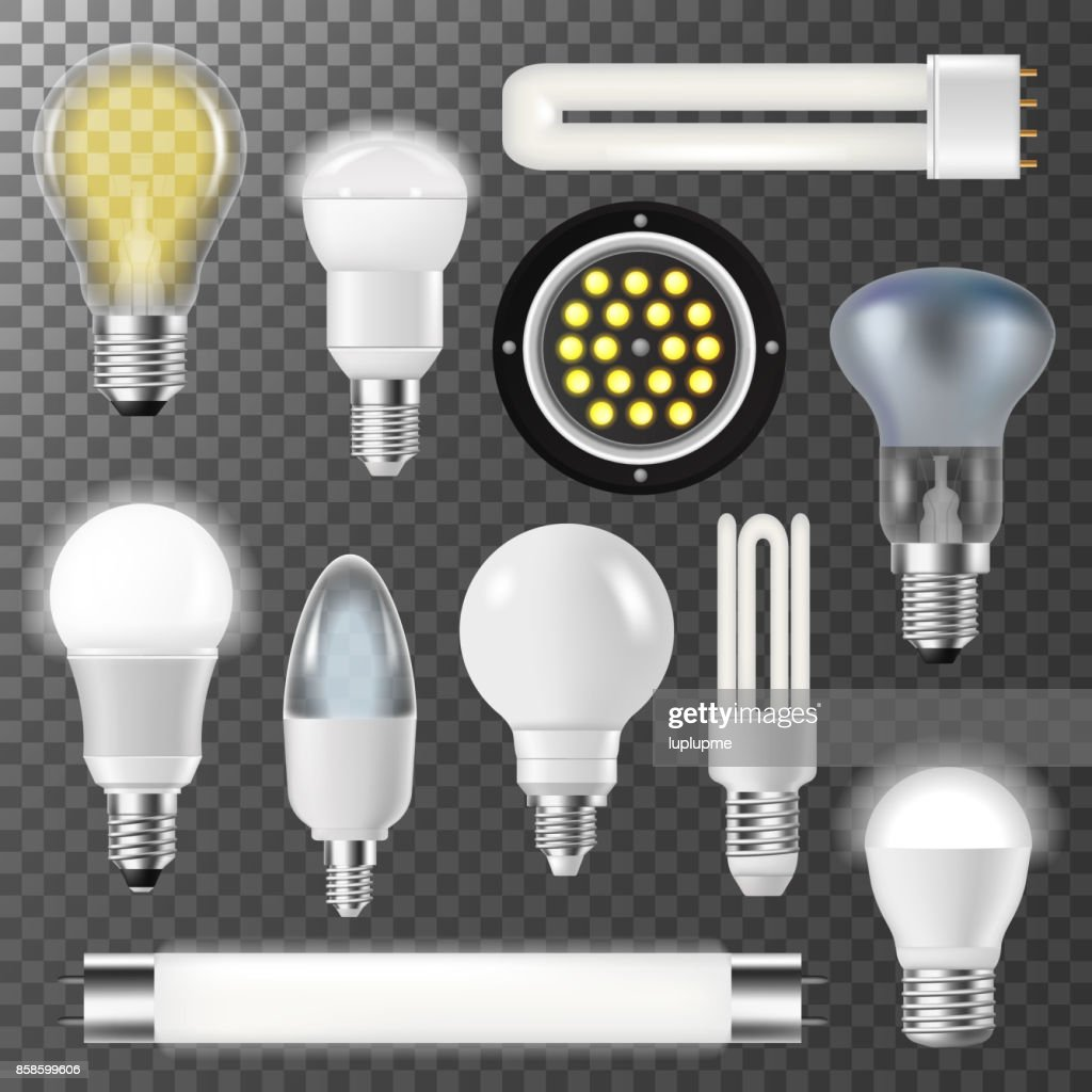 Incandescent lamps light bulbs fluorescent energy bright illuminated electrical glass vector illustration