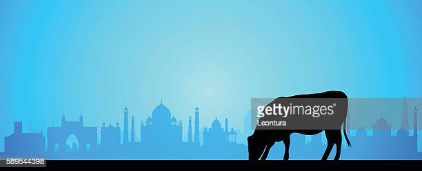 stockillustraties, clipart, cartoons en iconen met india (buildings are complete and moveable) - agra jama masjid mosque