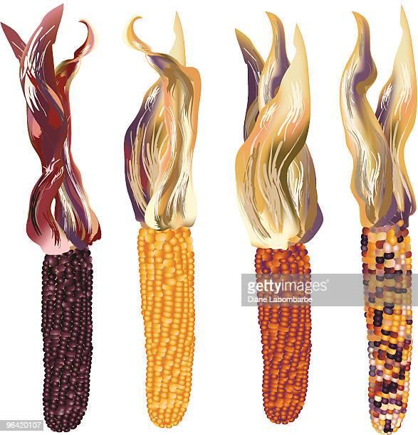 indian corn quad - zea stock illustrations, clip art, cartoons, & icons