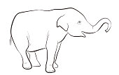 Indian elephant in outline style isolated on white background