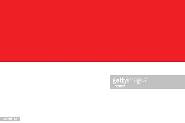 indonesian flag (official colours and shape) - indonesien stock-grafiken, -clipart, -cartoons und -symbole