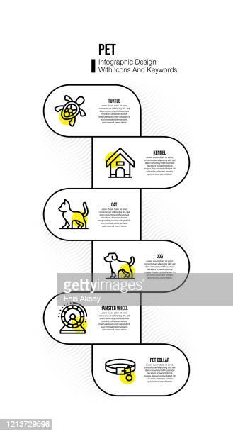 infographic design template with pet keywords and icons - domestic animals stock illustrations