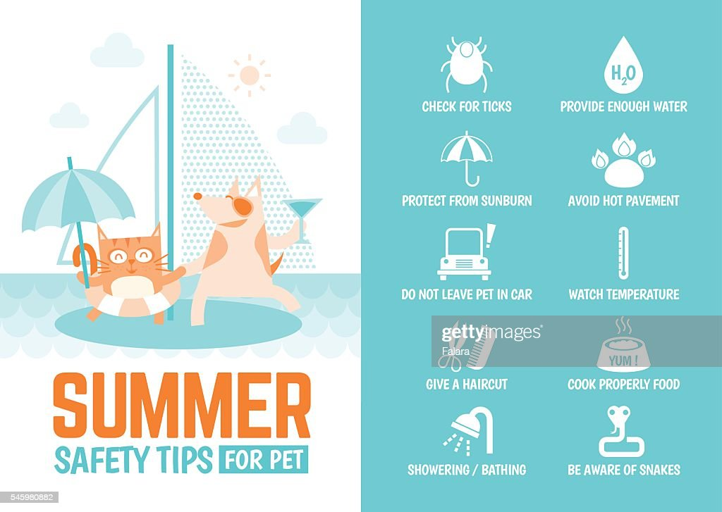 infographics about safety tips for pet during summer