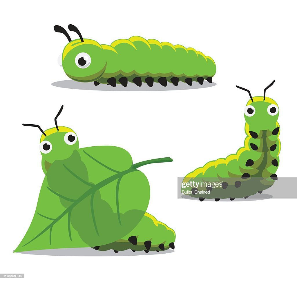 Insect Caterpillar Cartoon Vector Illustration