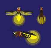 Insect Firefly Cute Cartoon Vector Illustration