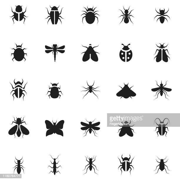 insect icon set - flying stock illustrations