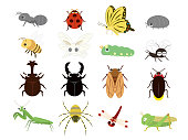 Insect icon set1