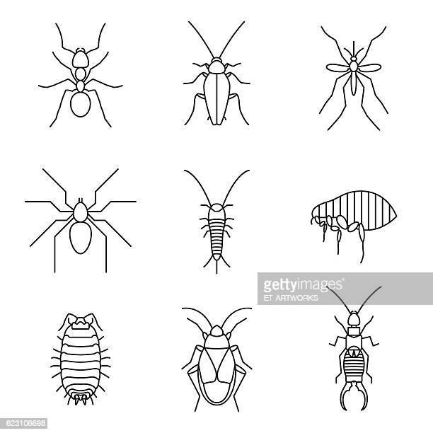 ilustraciones, imágenes clip art, dibujos animados e iconos de stock de iconos insectos - mosquito