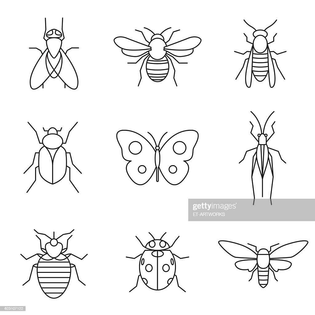 insect icons : stock illustration