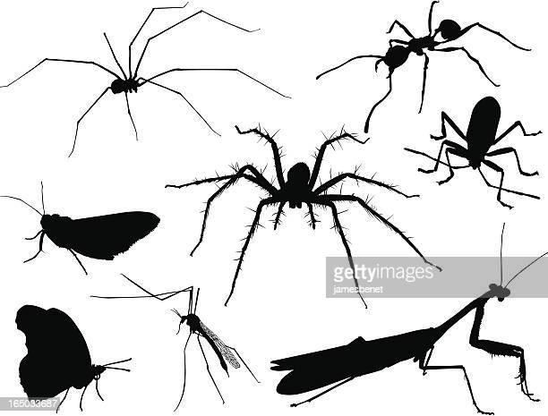 ilustraciones, imágenes clip art, dibujos animados e iconos de stock de insecto siluetas 2 (vector - cucarachas