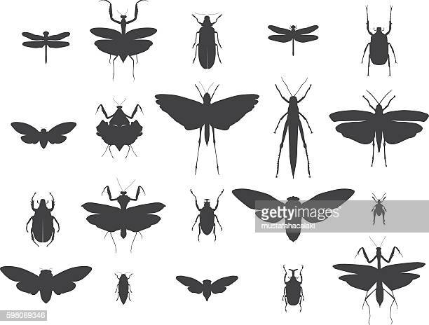 insect silhouettes set - insect stock illustrations