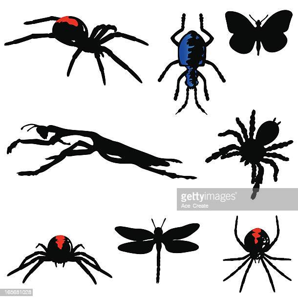 insect silhouettes with red and blue - black widow spider stock illustrations, clip art, cartoons, & icons