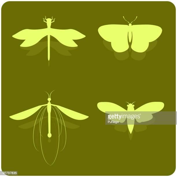illustrations, cliparts, dessins animés et icônes de insectes silhouettes - cigale