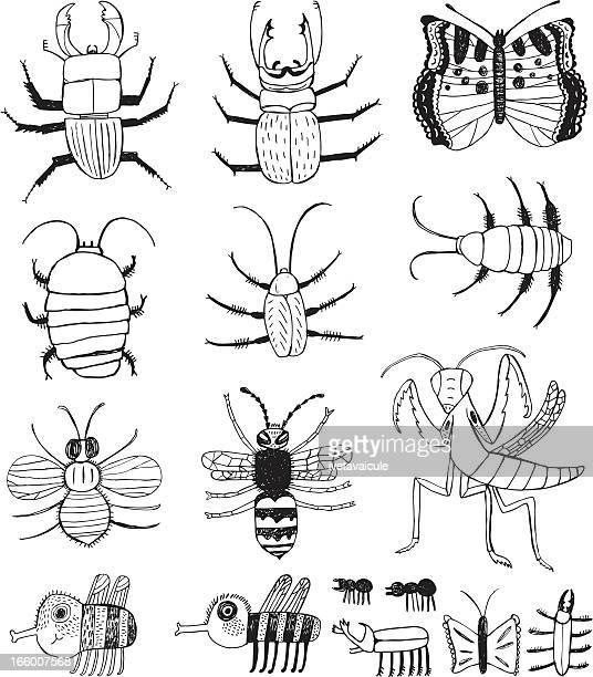 ilustraciones, imágenes clip art, dibujos animados e iconos de stock de insectos - cucarachas