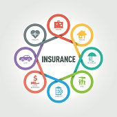 Insurance infographic with 8 steps, parts, options