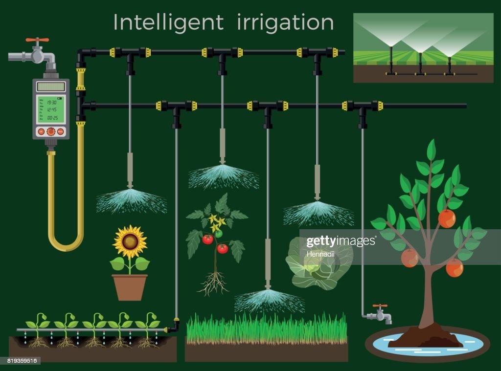 Intelligent irrigation system