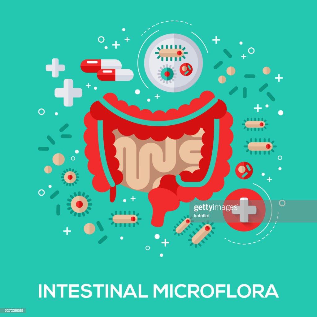 Intestinal microflora flat icons concept.