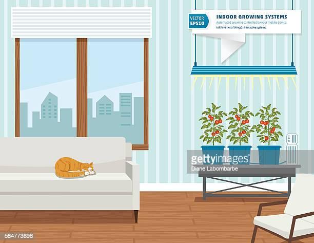 ilustrações, clipart, desenhos animados e ícones de iot hydroponic indoor growing systems concept - produto local