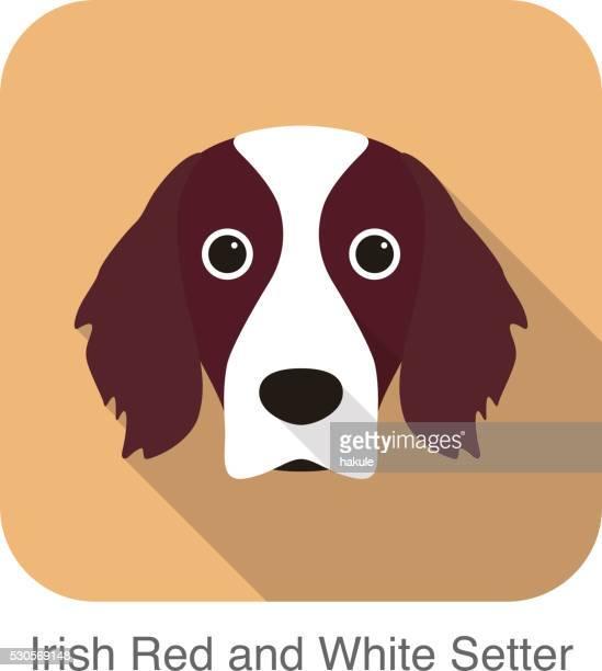 アイルランド赤と白のセッターテリア犬の顔のポートレート - イヌ科点のイラスト素材/クリップアート素材/マンガ素材/アイコン素材