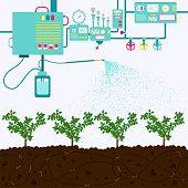 Irrigating plantation