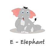 Isolated animal alphabet for the kids, E for Elephant