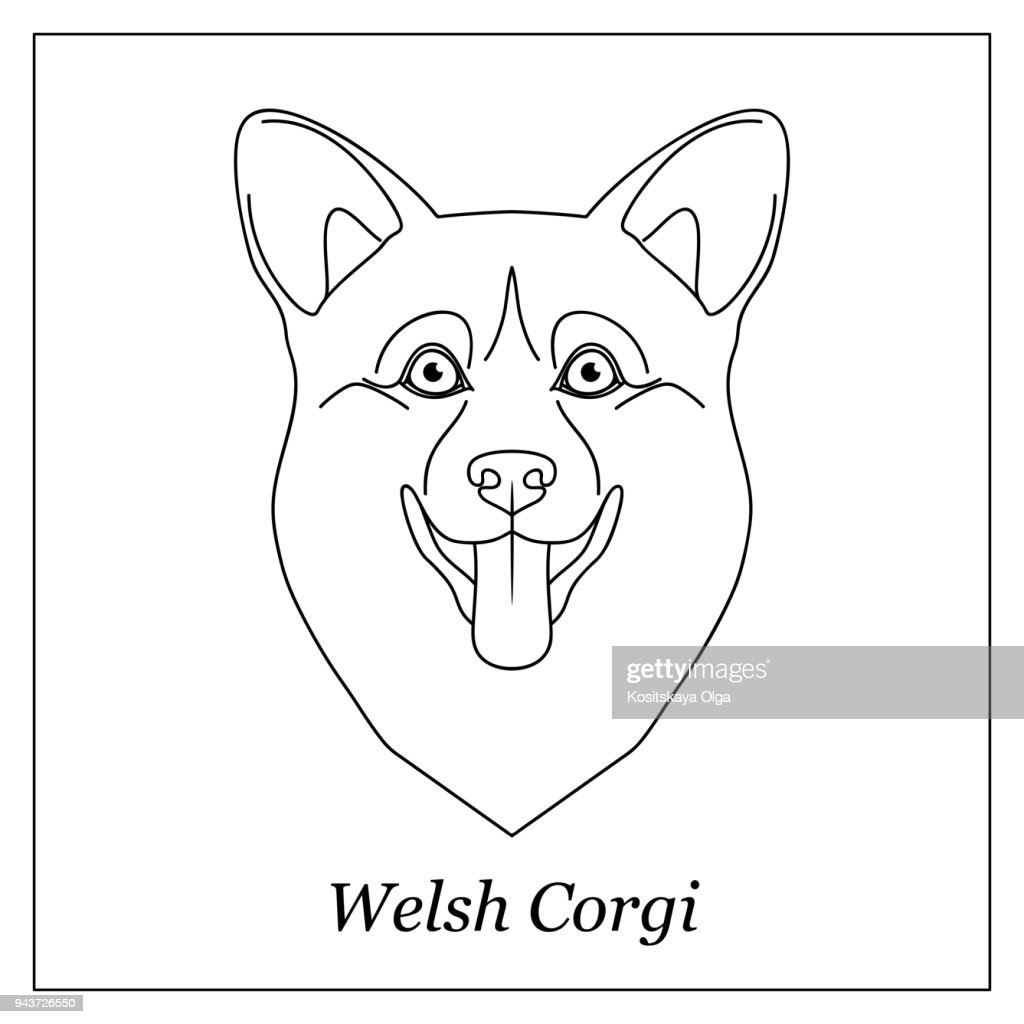 Isolated black outline head of happy welsh corgi pembroke or cardigan on white background. Line cartoon breed dog portrait.