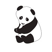isolated black-white panda.vector illustration