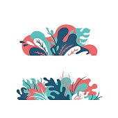 Isolated creative plants, grass and nature floral objects.