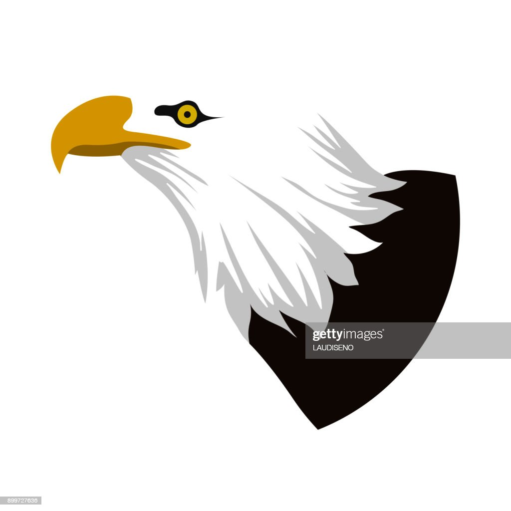 Isolated eagle avatar