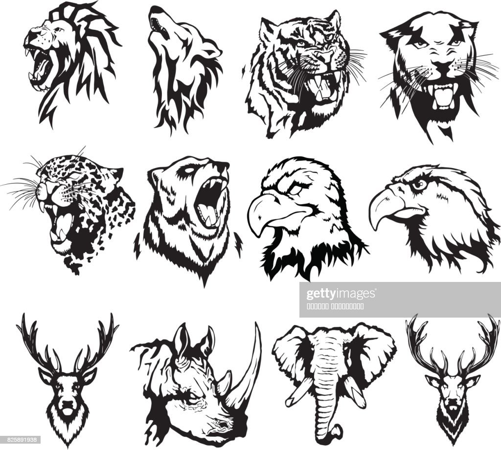 Isolated illustration of the head of an eagle, an owl, a deer, a lion, a wolf, a tiger, a panther, a leopard, a bear, a rhinoceros and an elephant