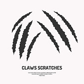 Isolated vector claws scratches