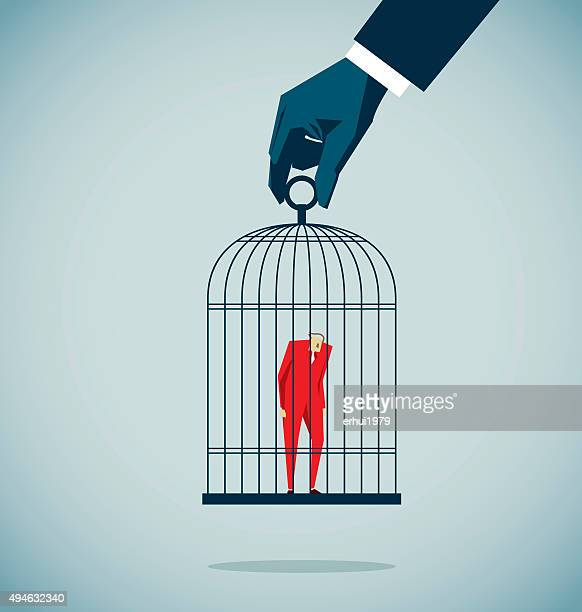 isolated - birdcage stock illustrations, clip art, cartoons, & icons
