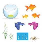Isometric Aquarium with fishes
