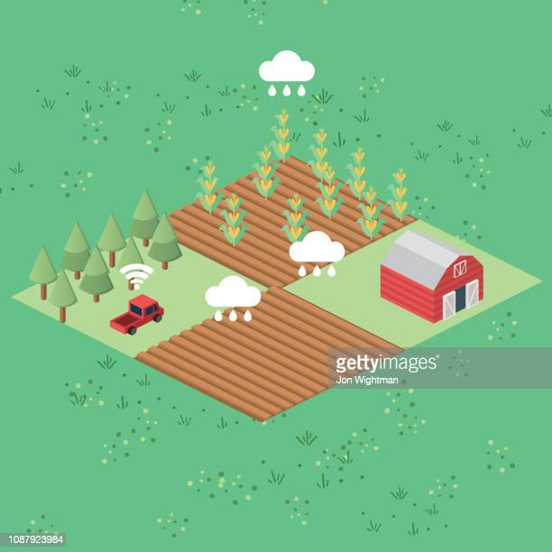 isometric farm scene - corn crop stock illustrations, clip art, cartoons, & icons