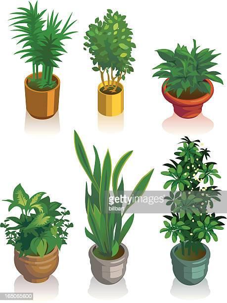 Isometric House Pflanzen