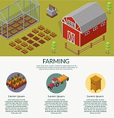 Isometric low poly vector farm elements  background infographic