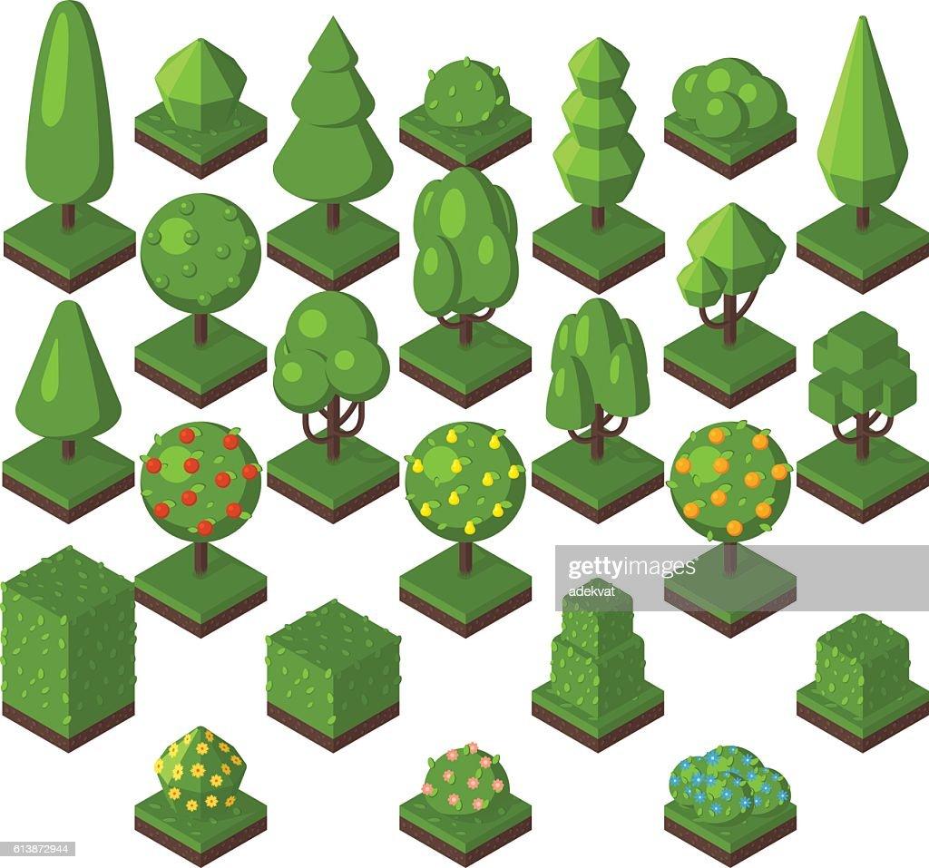 Isometric tree vector illustration.