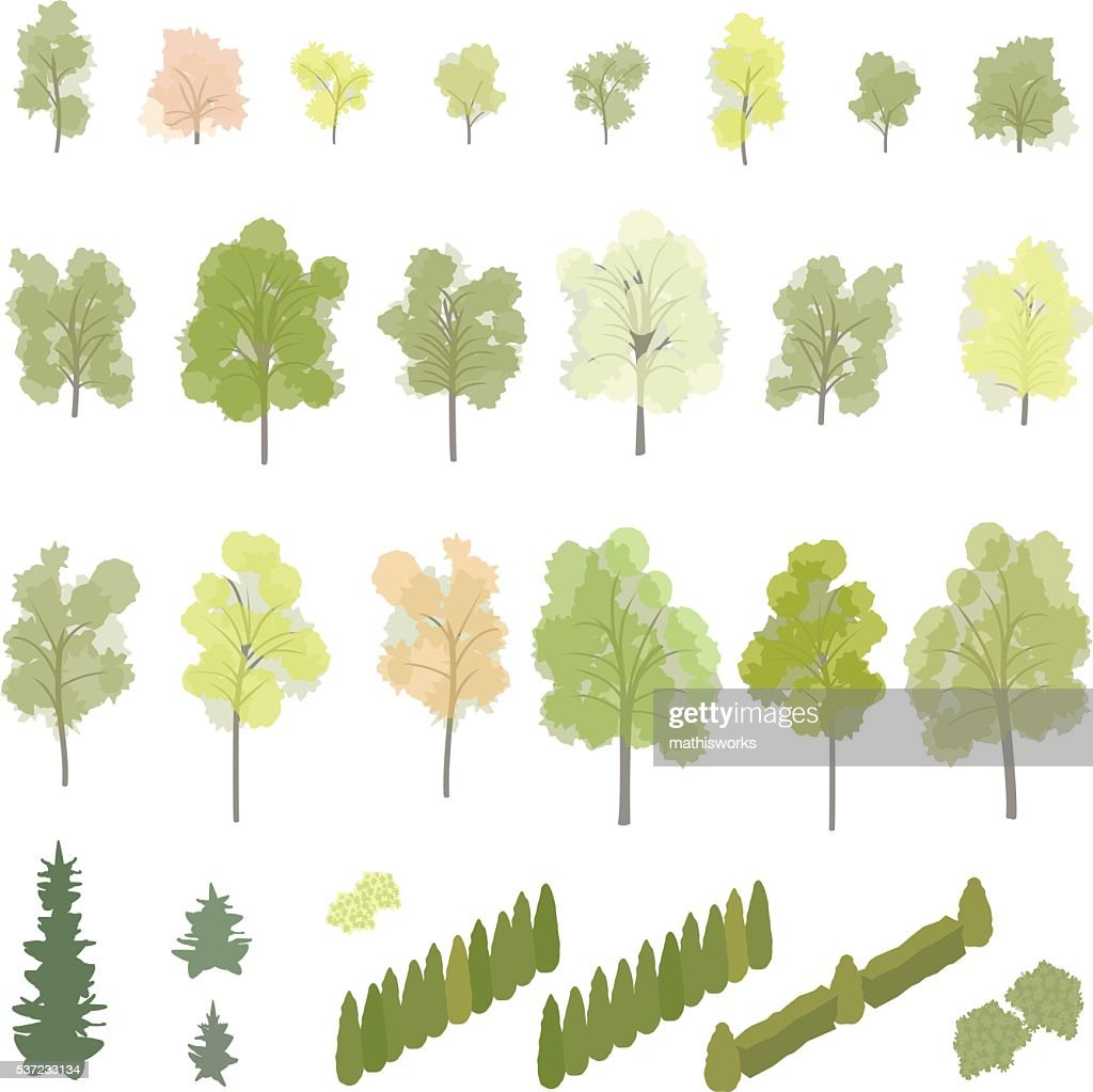 Isometric Trees and Shrubs