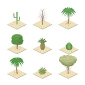 Isometric view desert plants. Tropical plants. Cacti, trees and bushes.