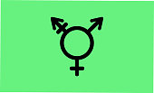 Israel Transgender and Genderqueer pride flag - one of the sexual minority of LGBT community